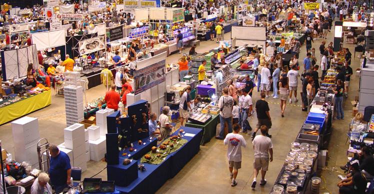 Events & Festivals in Richmond, VA in Spring - Reptile Expo