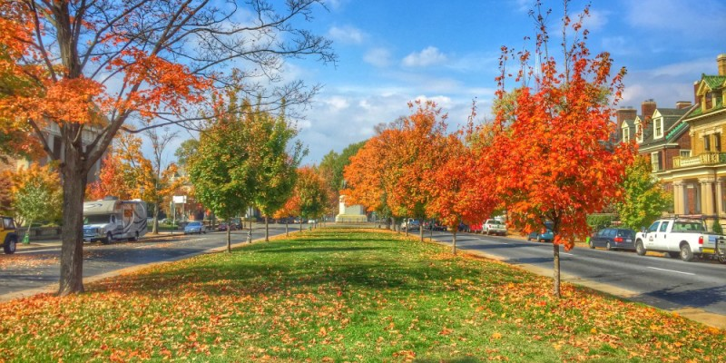 Things To Do In Richmond, VA - Monument Ave