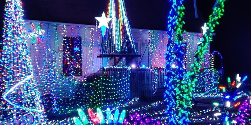 Blue Spruce Christmas Tacky Lights Tour